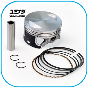 13100-kwn-600a-164cc-piston-set-pcx125-p01.png